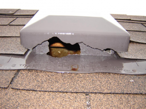Squirrel entry via roof vent