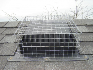 Box-screened roof vent