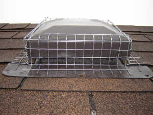 Screened roof vent
