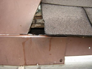 Squirrel hole in gable end